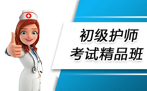 初级护师考试精品班