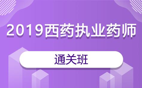 2019西药执业药师通关班